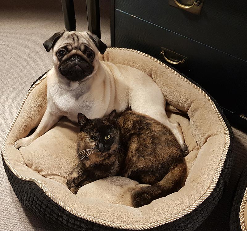 Hilde og Bertha